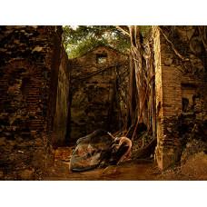 Invocation in Ruinas da Ingreja