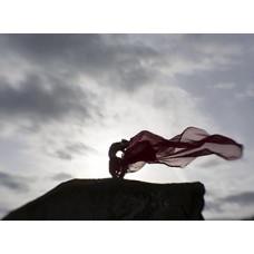 Wildflowers Encounter (Casadh) 9: The Cailleach